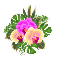 Bouquet with tropical flowers floral arrangement vector