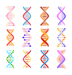 dna helix icons genetic medicine signs set vector image