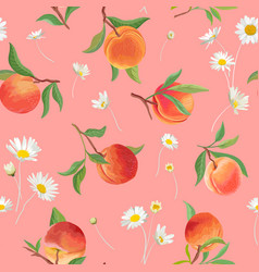 peach pattern with daisy tropic fruits leaves vector image