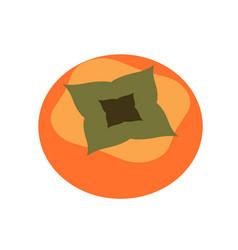 Persimmon flat color art vector