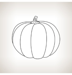 Pumpkin in the Contours on a Light Background vector image