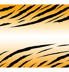 Tigerskinbackground vector