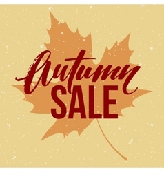 Autumn seasonal sale banner design fall leaf vector