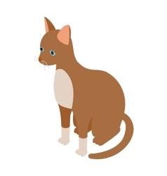 Cornish rex cat icon isometric 3d style vector