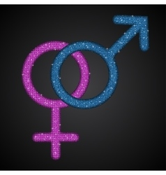 Gender men women blue pink sequins icon vector