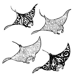 manta ray vector image