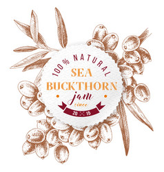 sea buckthorn jam paper emblem vector image