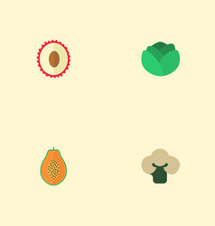 flat icons broccoli litchi pawpaw and other vector image vector image