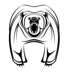 wild bear vector image