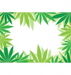 hemp white background vector image vector image
