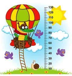 Balloon height measure vector