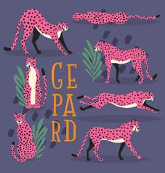 Collection cute hand drawn pink cheetahs vector