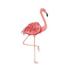 flamingo bird icon image vector image