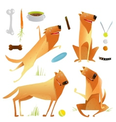 Funny Dogs Jumping Playing with Ball Sitting vector