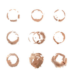 round brown coffee stains vector image