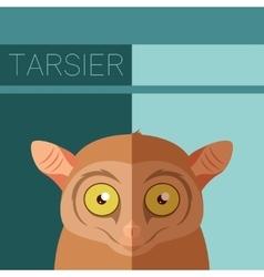 Tarsier flat postcard vector image vector image