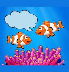 two clowfish swimming under the sea vector image vector image