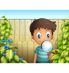 A boy holding a magnifying glass to see bugs vector