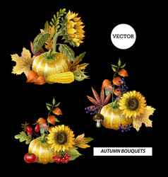 bouquets of autumn leaves fruits berries vector image