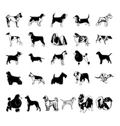 Dog clipart cartoon collection set vector