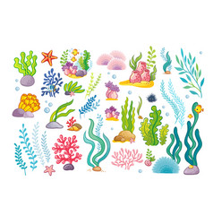 Large collection with marine objects and fish vector