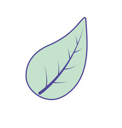 natural leaf of plant and exotic botany vector image