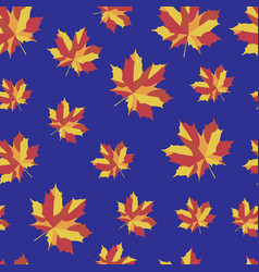 Pattern with b bright maple leaves vector