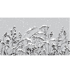 seamless border with monochrome meadow plants and vector image