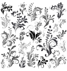 swirly design elements vector image vector image