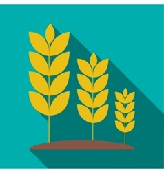 Wheat germ icon flat style vector