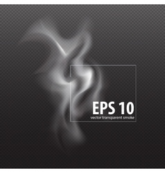 white smoke on transparent black background white vector image