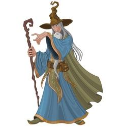 Fantasy Style Wizard vector image