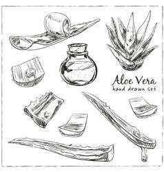 Aloe vera hand drawn set vector