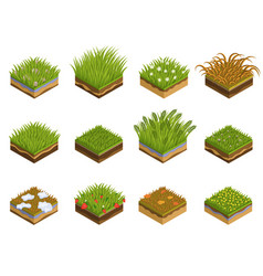 grass and soil layers isometric vector image