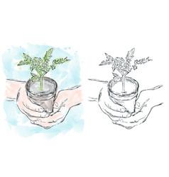 growing plant watercolor artwork vector image