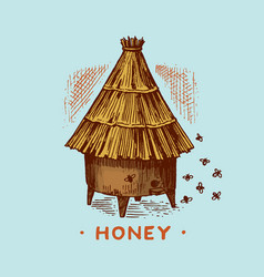 honey and bees honeycombs and hive and apiary vector image