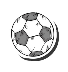 Soccer ball sport vector