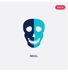 two color skull icon from history concept vector image
