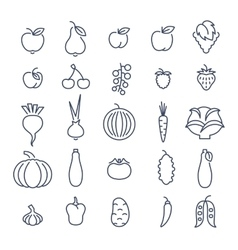 Farm fruits and vegetables flat line icons vector image vector image