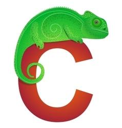 C for Chameleon vector image