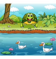 A turtle beside the river with ducks vector