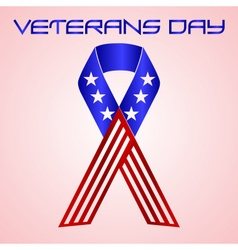 American veterans day celebration in americal vector