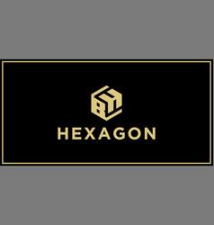 bh hexagon logo vector image