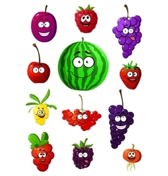 Colorful fruits and berries characters vector image