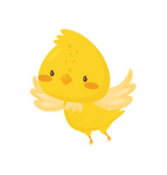 Cute chicken flapping wings funny bird cartoon vector