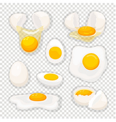 eggs on transparent background vector image
