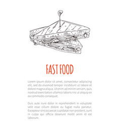 fast food sandwich poster vector image