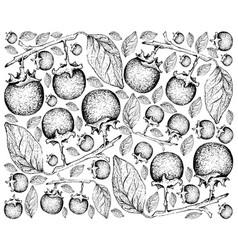 Hand drawn background of fresh ebony fruits vector