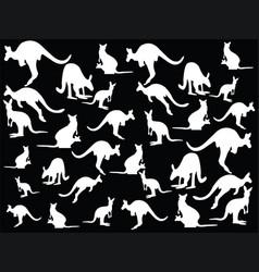 kangaroo collections vector image