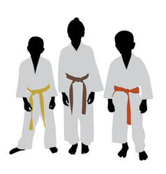 Karate kids with different color belt rank vector